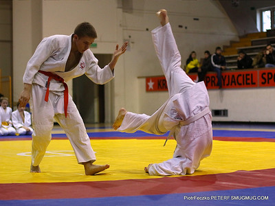 Ju-jitsu, BJJ and similar sports activities