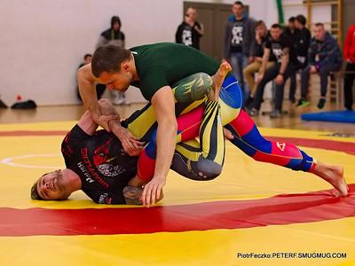 Ju-jitsu, BJJ and similar sports activities